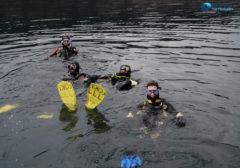 Kurs nurkowania P1 maj/czerwiec 2019 zapraszamy