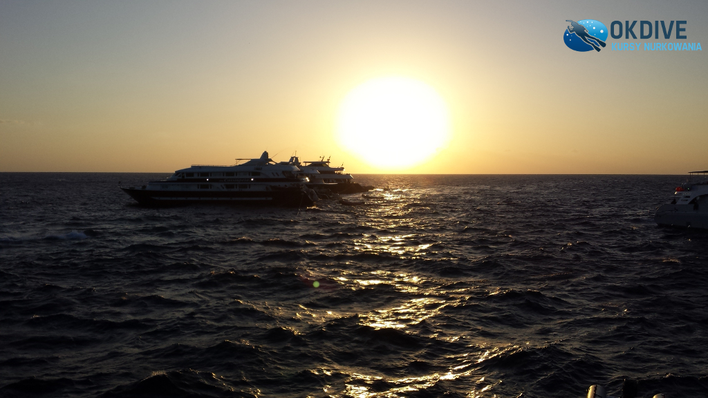 safari_nurkowe_egipt_okdive