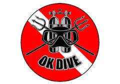 Nowe logo naszej szkoły nurkowania Ok Dive